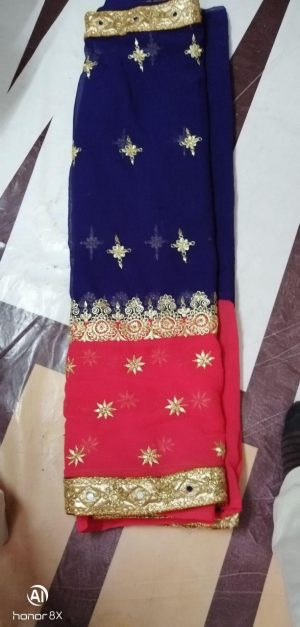 HALF HALF panel concept single jari saree