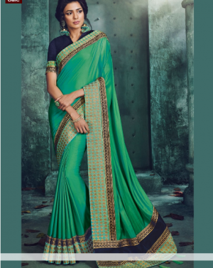 Traditional single jari panel concept cut-peast saree
