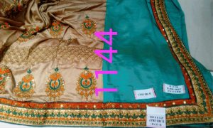half half , panel , diamond test saree