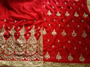 single jari concept Patali- Pallu saree Design