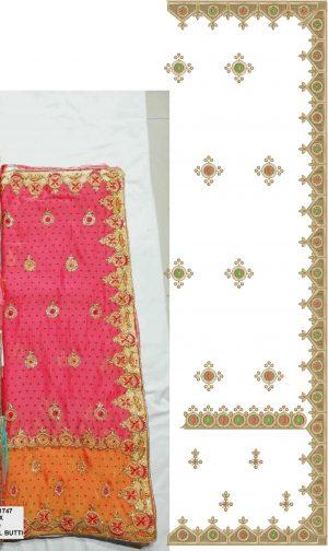 c-pallu concept form cut-peast saree (concept design)