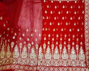 Single Jari  panel saree Design