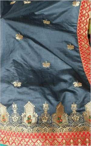 panel concept saree