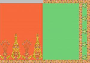 Box saree