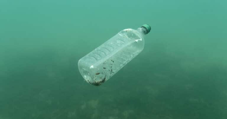 Opinion   If We Stop Burning Fossil Fuels, Will We End Up With More Plastic and Toxic Chemicals?
