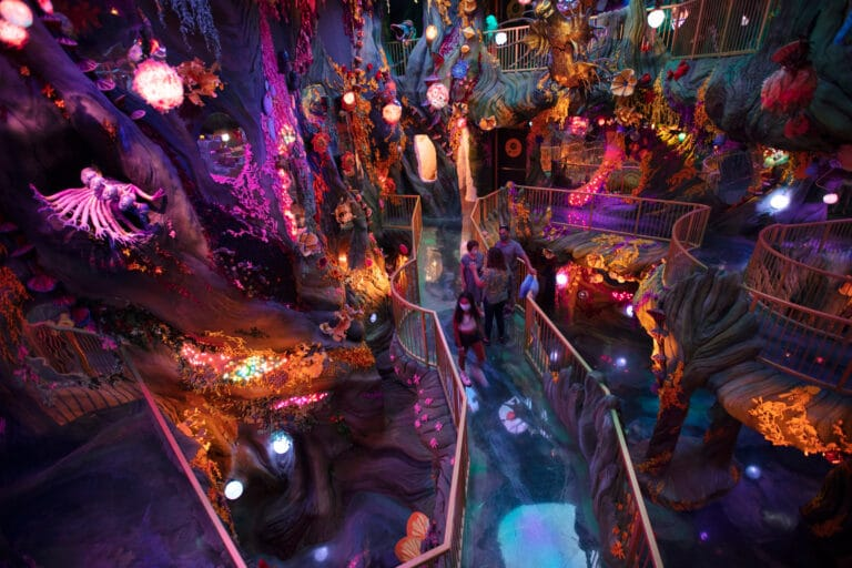 With a Denver Location, Meow Wolf Expands Its Immersive Schtick