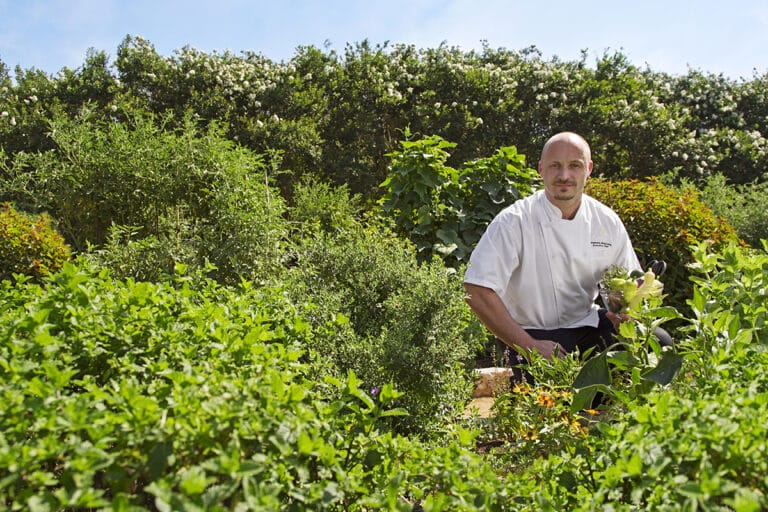 Conscientious Cuisine at Lake Austin Spa with Chef Stéphane Beaucamp: A Thoughtful Fusion of Nutrition and Flavor