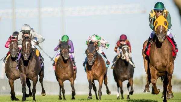 Town Cruise Goes Gate-to-Wire to Upset Woodbine Mile