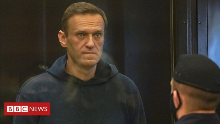Navalny: Moscow court hears case for jailing Putin critic