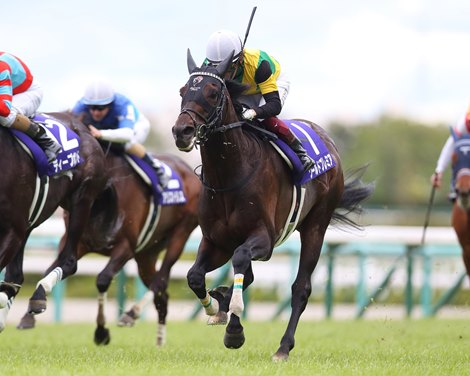 World Premier Tops Japanese Stayers in Tenno Sho