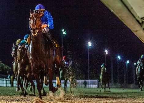 Maxfield to Make 4-Year-Old Debut in Mineshaft Stakes