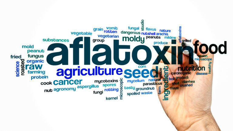 WHO calls for mycotoxin data in some peanuts, cereals and spices