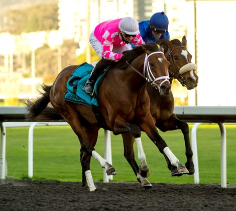 Rombauer Rallies From Last to Win El Camino Real Derby