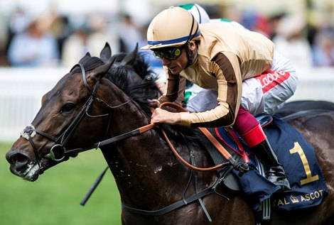 Eves Optimistic About Upcoming Tattersalls Craven Sale
