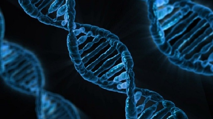 There may be a gene for COVID-19 resistance