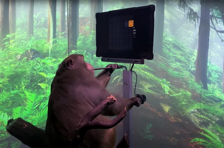 watch a monkey play pong with its mind in elon musk's latest neuralink demonstration