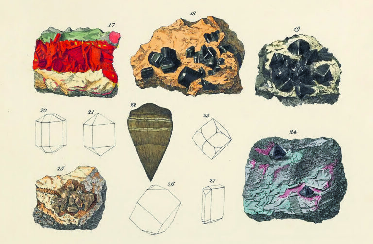 A Beautiful Guide to Colors in the Natural World, Revisited 200 Years Later