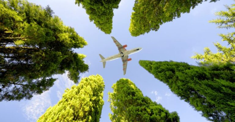 Airlines must forge meaningful partnerships to tackle environmental sustainability