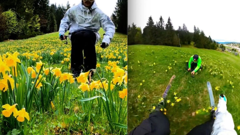 Daffodil Skier Nearly Takes Out His Dad Holding The Camera