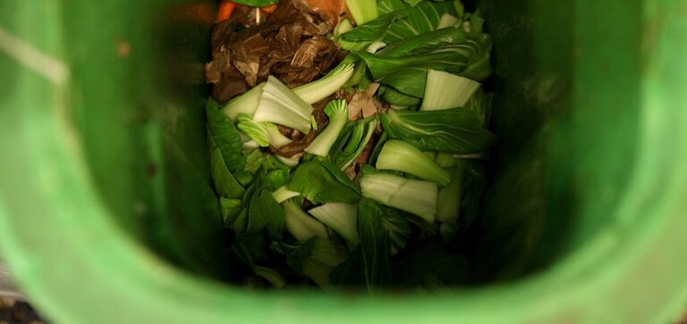 Coalition seeks to highlight composting as key urban infrastructure