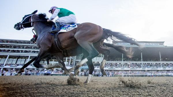 Five Key Takeaways from Haskell Stakes Weekend
