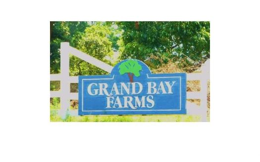 12355 Grand Bay Farms Ct #70, Grand Bay, AL