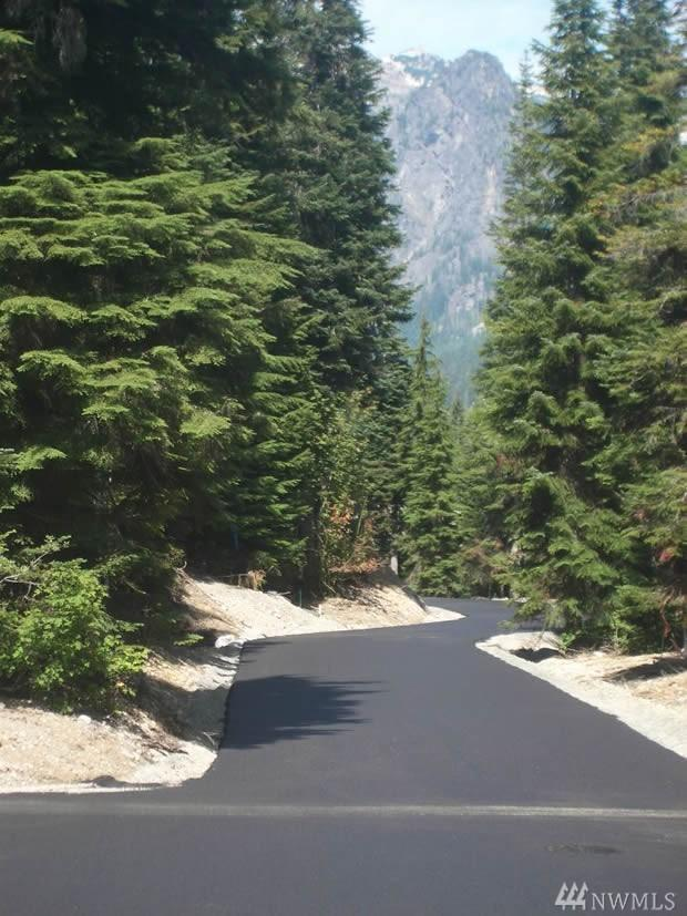 28 Cedar Ln, Snoqualmie Pass, WA