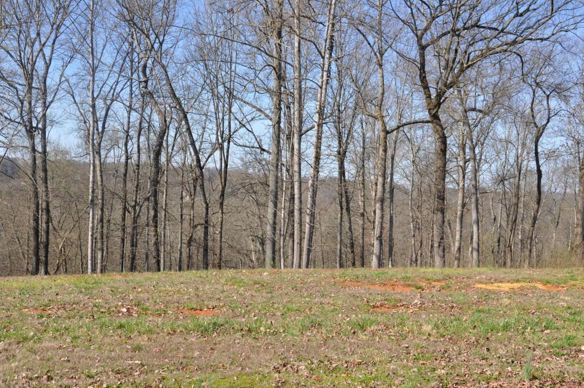 3330 Preserve Pointe Way, Louisville, TN