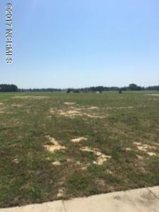 3625 New Town Ct, Farmville, NC