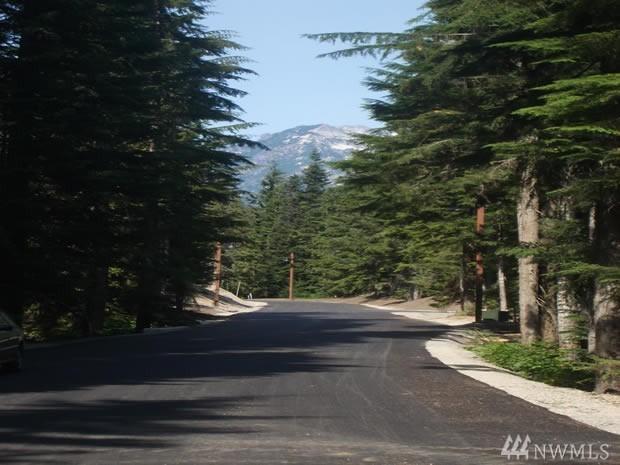 39 Tanner Way, Snoqualmie Pass, WA