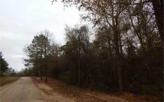 8 Magee Hill Rd, Tylertown, MS