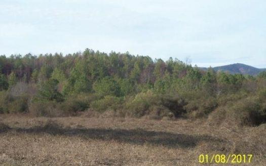 County Road 6, Piedmont, AL