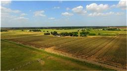 Cr 266, East Bernard, TX