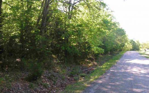 CR County Road 804, Gamaliel, AR