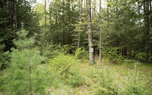 Eagles Way #Lot 12, Porterfield, WI