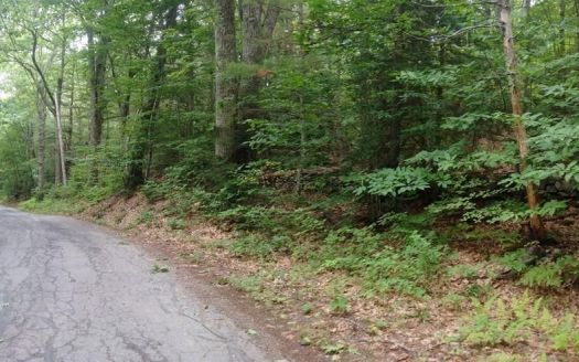 Forest Dr #L1, Hubbardston, MA