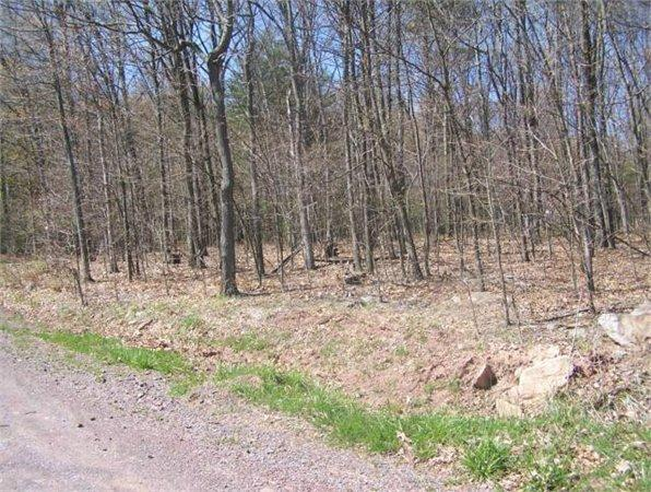 Lot 25 Bucktail Acres, Robertsdale, PA