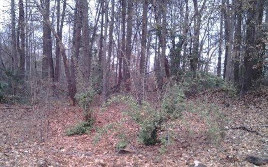 Tree Top Ln, Easley, SC