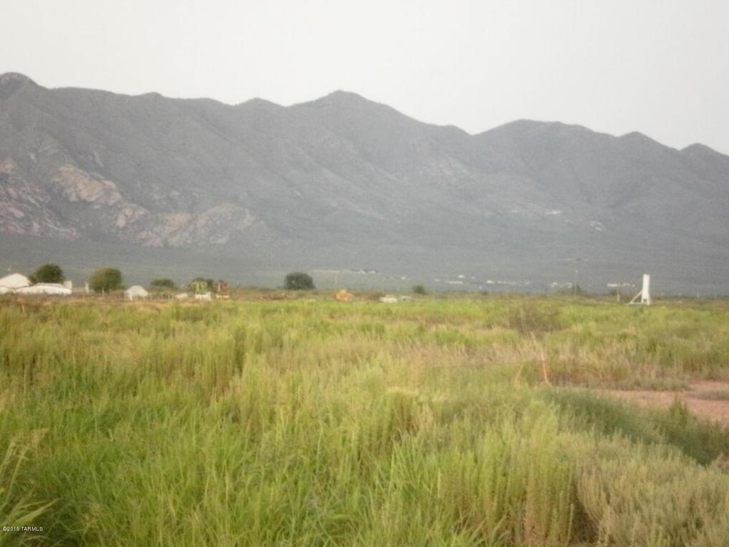 W Gleeson Rd E Of Mormon Rd, Elfrida, AZ