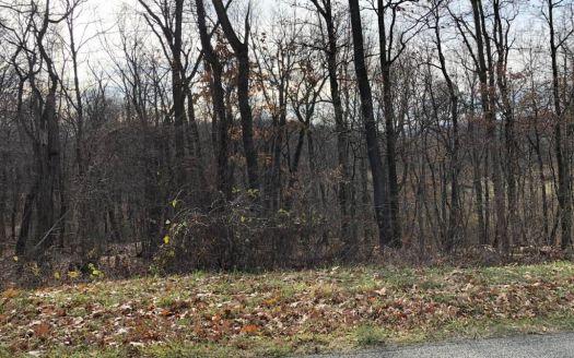 Yauger Hollow Rd, Lemont Furnace, PA