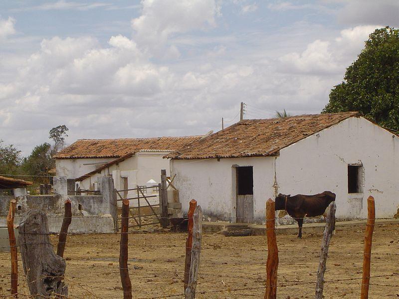 Штаты Параиба, Рио-Гранде-ду-Норте и Сеара