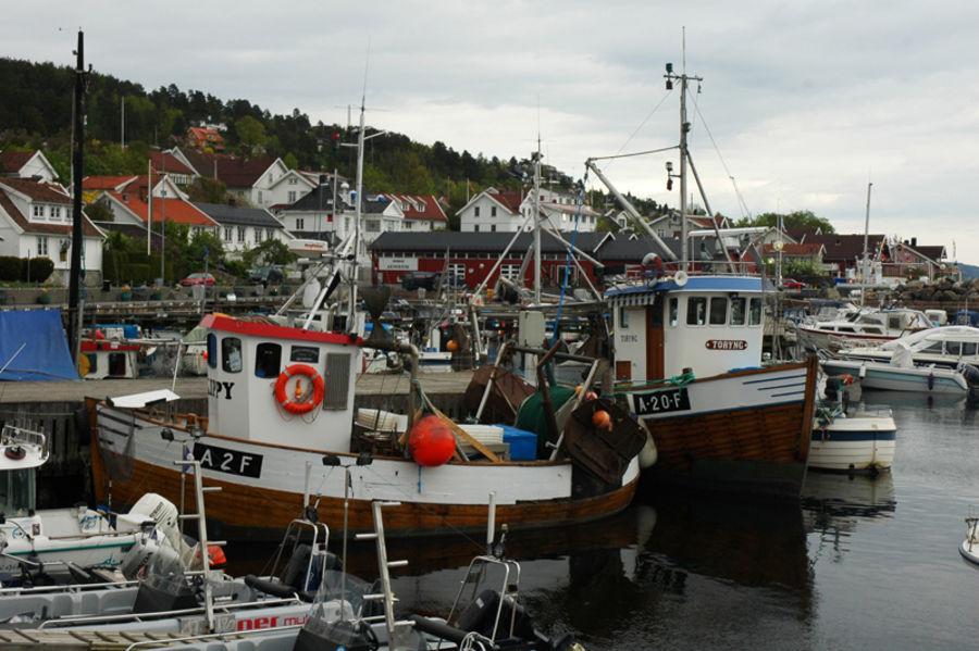 Окрестности Ослофьорда