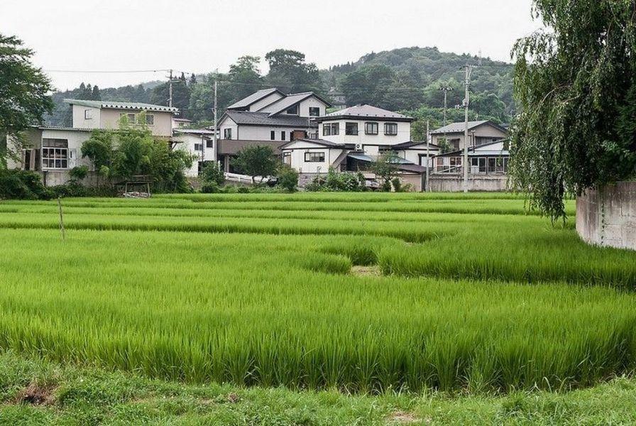 Хираидзуми