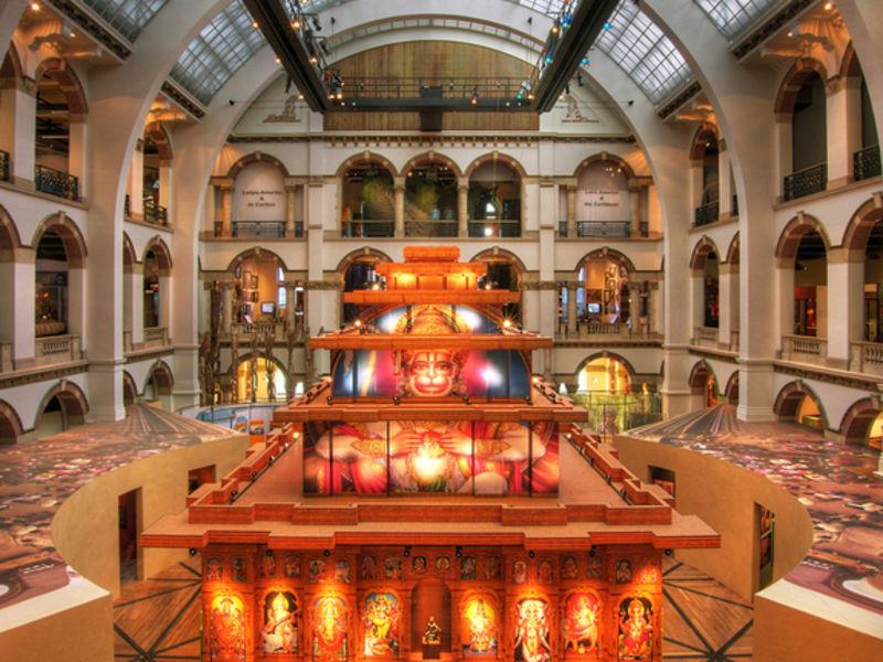 Музей тропиков