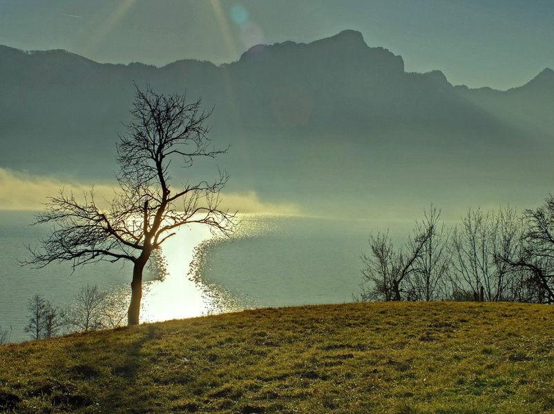 Озера Зальцкаммергута