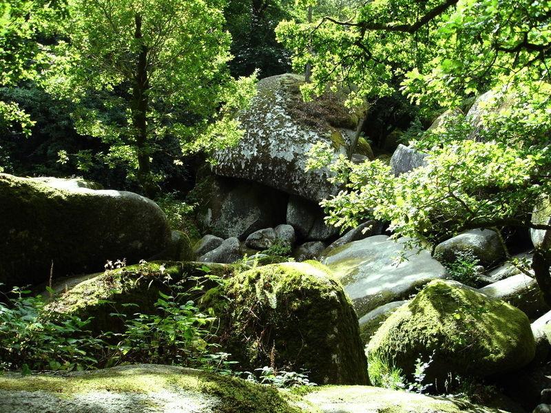 Региональный природный парк Арморика