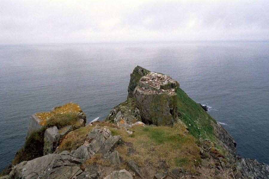 Остров Тори