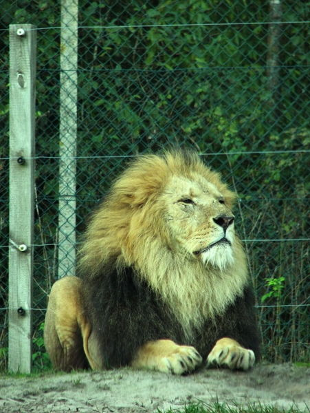 Зоопарк Гивскуд