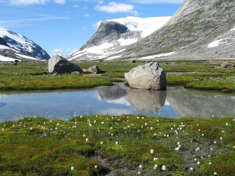 Национальный парк Сальтфьеллет-Свартисен