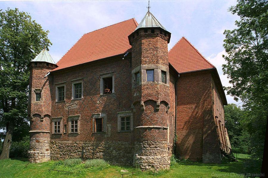 Замок в Дебно